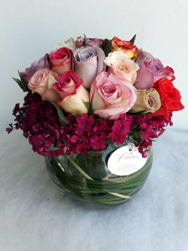 Variedad de Rosas de Colores